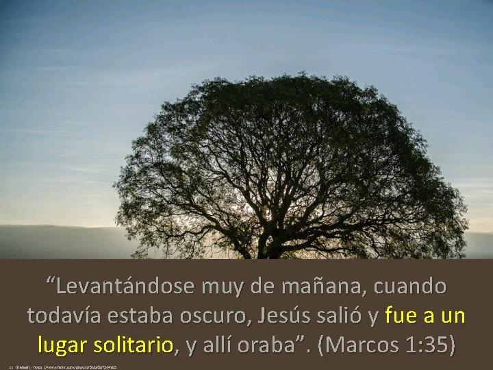 """""""Levantándose muy de mañana, cuando todavía estaba oscuro, Jesús salió y fue a un"""
