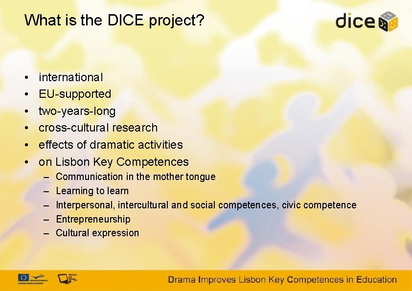 What is the DICE project? • • • international EU-supported two-years-long cross-cultural research effects