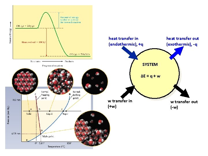 heat transfer in (endothermic), +q heat transfer out (exothermic), -q SYSTEM ∆E = q