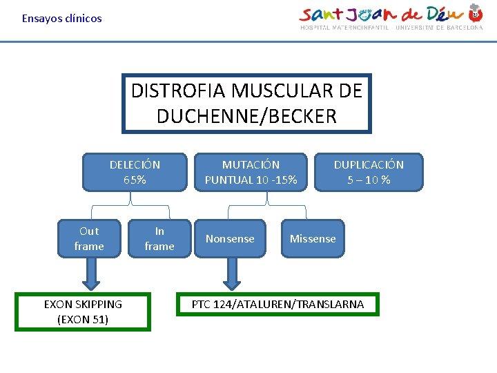 Ensayos clínicos DISTROFIA MUSCULAR DE DUCHENNE/BECKER DELECIÓN 65% Out frame EXON SKIPPING (EXON 51)