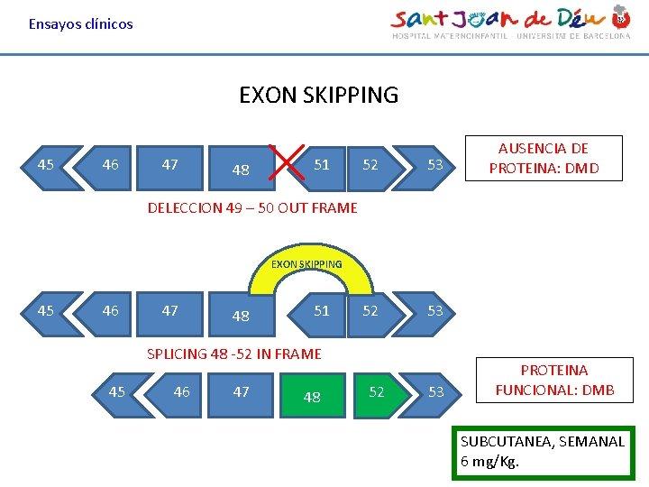 Ensayos clínicos EXON SKIPPING 45 46 47 48 51 52 53 AUSENCIA DE PROTEINA: