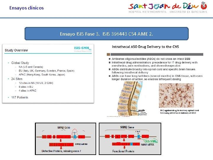 Ensayos clínicos Ensayo ISIS Fase 3. ISIS 396443 CS 4 AME 2.