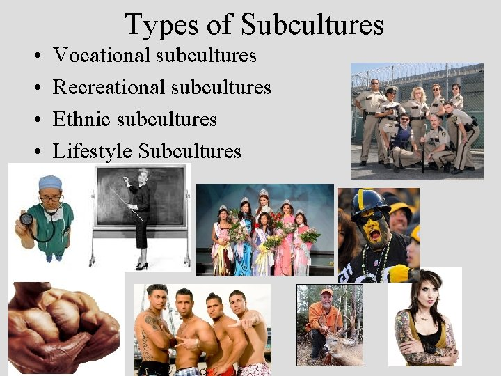 Types of Subcultures • • Vocational subcultures Recreational subcultures Ethnic subcultures Lifestyle Subcultures