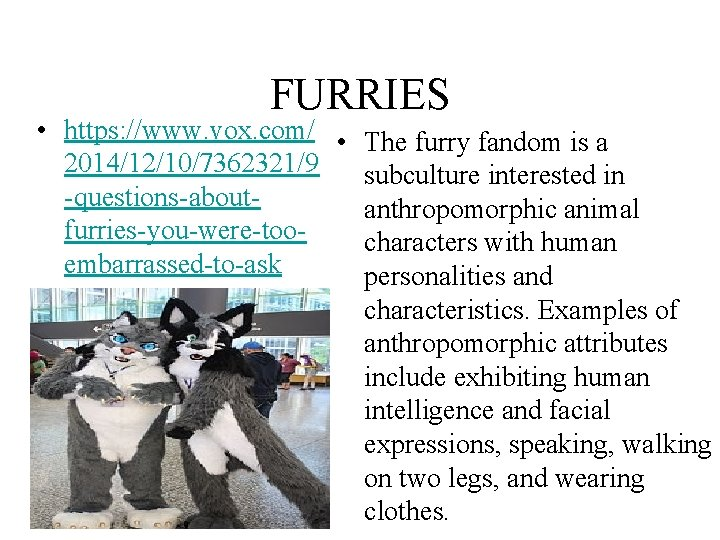 FURRIES • https: //www. vox. com/ • 2014/12/10/7362321/9 -questions-aboutfurries-you-were-tooembarrassed-to-ask The furry fandom is a