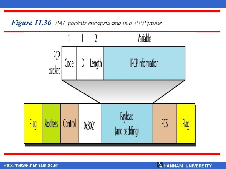 Figure 11. 36 PAP packets encapsulated in a PPP frame Http: //netwk. hannam. ac.