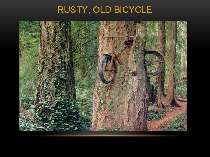 RUSTY, OLD BICYCLE