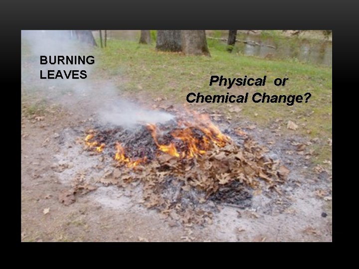 BURNING LEAVES Physical or Chemical Change?