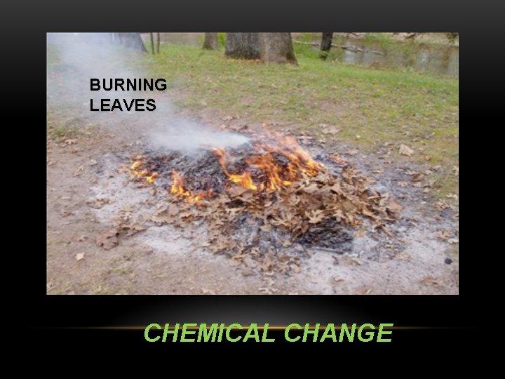 BURNING LEAVES CHEMICAL CHANGE