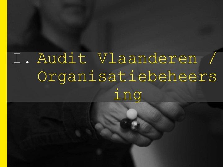 I. Audit Vlaanderen / Organisatiebeheers ing