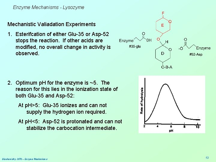 Enzyme Mechanisms - Lysozyme Mechanistic Valiadation Experiments 1. Esterifcation of either Glu-35 or Asp-52
