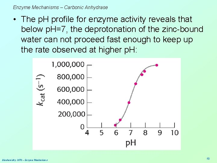 Enzyme Mechanisms – Carbonic Anhydrase • The p. H profile for enzyme activity reveals