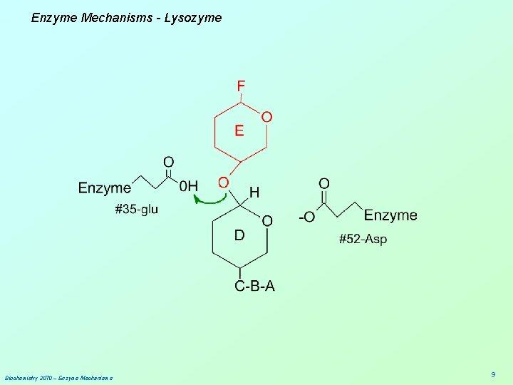 Enzyme Mechanisms - Lysozyme Biochemistry 3070 – Enzyme Mechanisms 9
