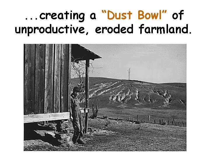 """. . . creating a """"Dust Bowl"""" of unproductive, eroded farmland."""