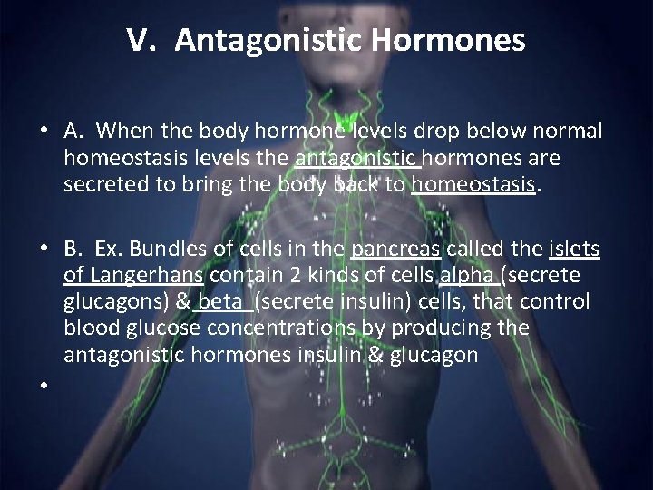 V. Antagonistic Hormones • A. When the body hormone levels drop below normal homeostasis