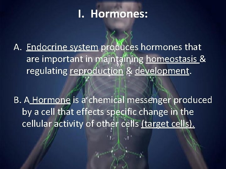 I. Hormones: A. Endocrine system produces hormones that are important in maintaining homeostasis &