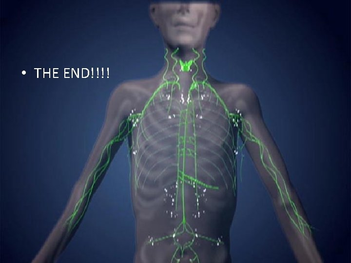 • THE END!!!!