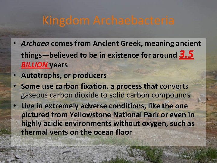 Kingdom Archaebacteria • Archaea comes from Ancient Greek, meaning ancient things—believed to be in