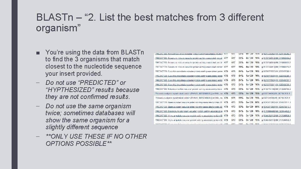 """BLASTn – """" 2. List the best matches from 3 different organism"""" ■ You're"""