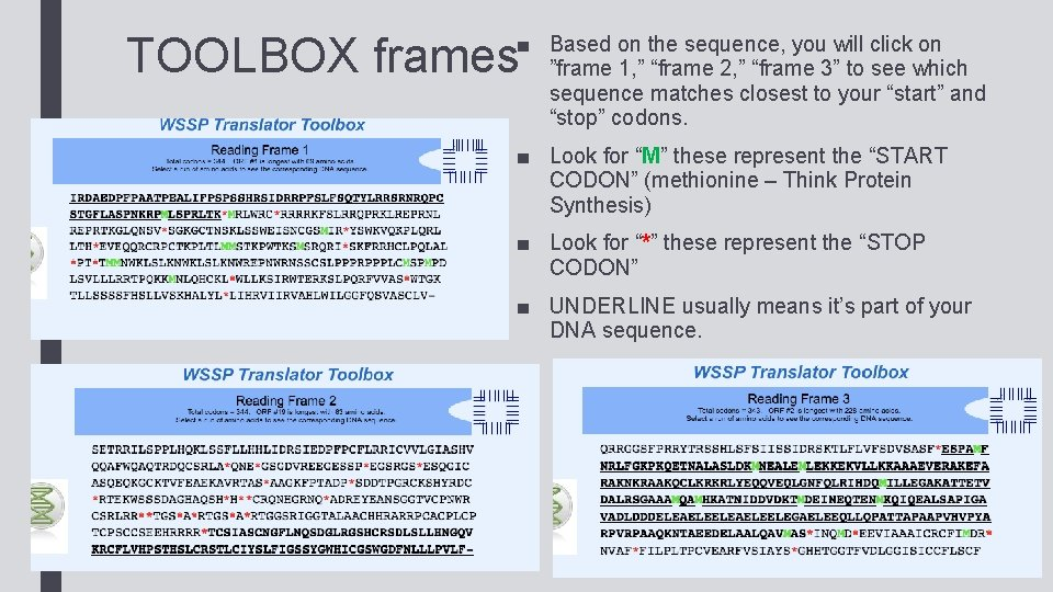 """■ Based on the sequence, you will click on """"frame 1, """" """"frame 2,"""