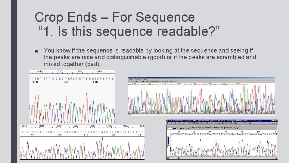 """Crop Ends – For Sequence """" 1. Is this sequence readable? """" ■ You"""
