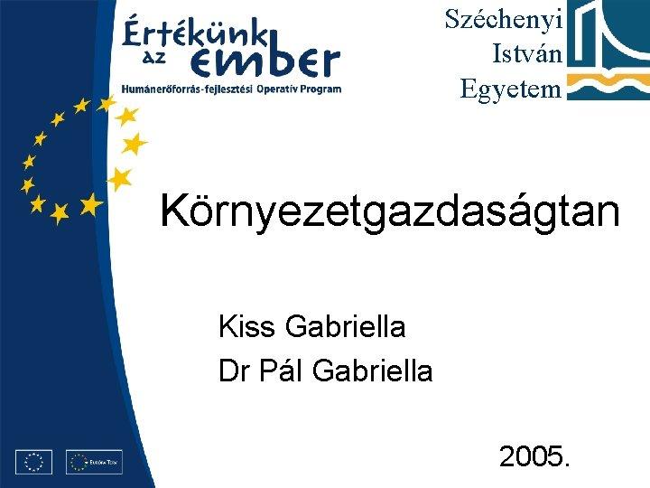 Széchenyi István Egyetem Környezetgazdaságtan Kiss Gabriella Dr Pál Gabriella 2005.