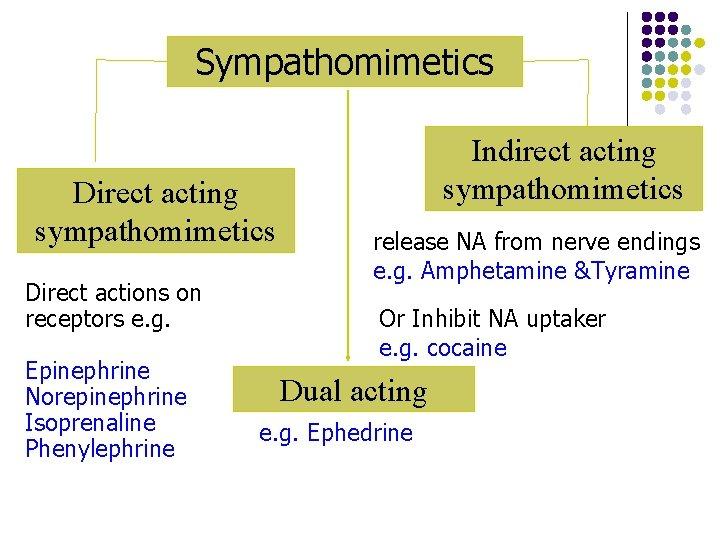 Sympathomimetics Direct acting sympathomimetics Direct actions on receptors e. g. Epinephrine Norepinephrine Isoprenaline Phenylephrine