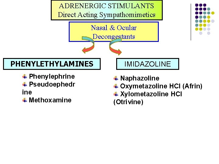 ADRENERGIC STIMULANTS Direct Acting Sympathomimetics Nasal & Ocular Decongestants PHENYLETHYLAMINES Phenylephrine Pseudoephedr ine Methoxamine