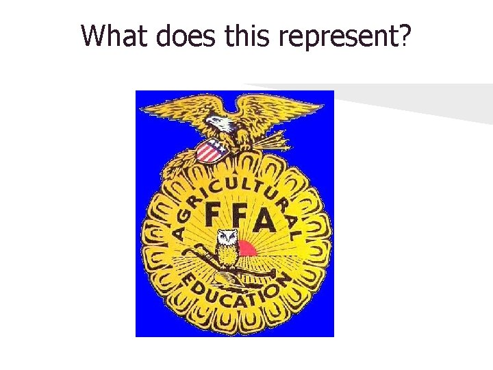 What does this represent?