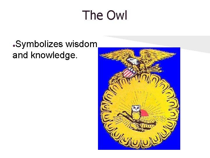 The Owl Symbolizes wisdom and knowledge. ●