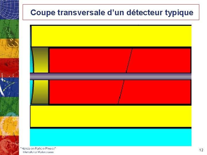 Coupe transversale d'un détecteur typique 12