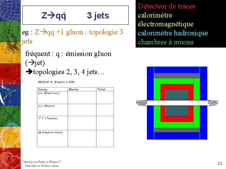 Z qq- 3 jets eg : Z qq +1 gluon : topologie 3 jets