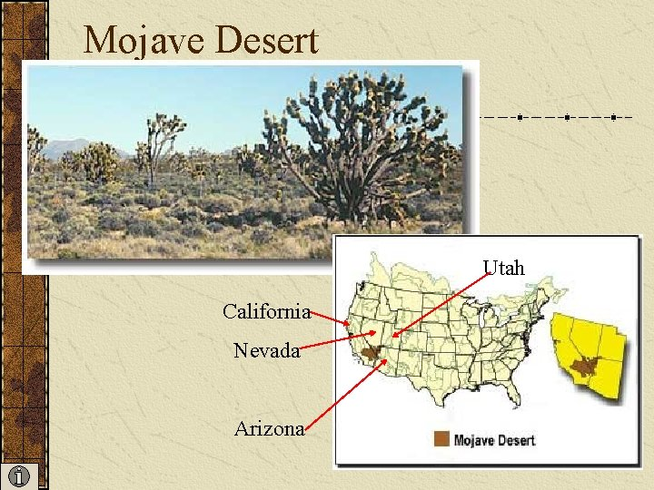 Mojave Desert Utah California Nevada Arizona