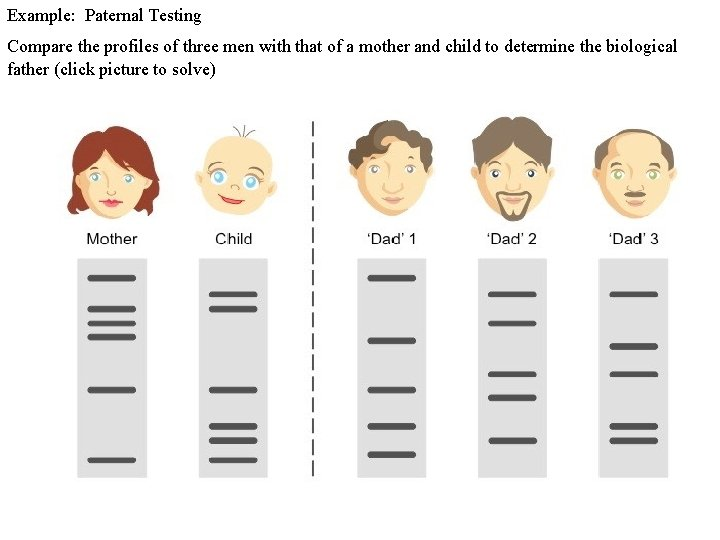 Example: Paternal Testing Compare the profiles of three men with that of a mother