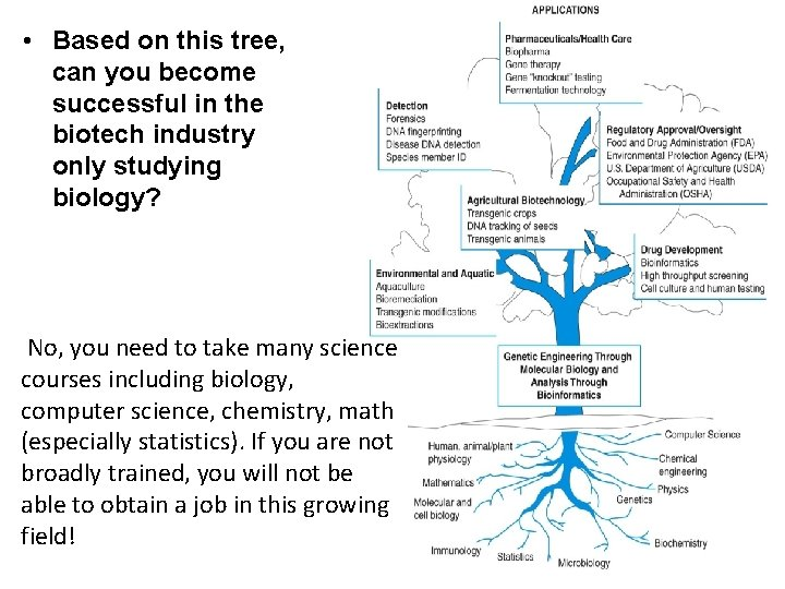 • Based on this tree, can you become successful in the biotech industry