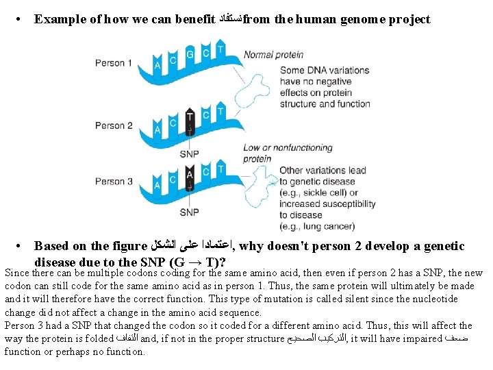• Example of how we can benefit ﻧﺴﺘﻔﺎﺩ from the human genome project