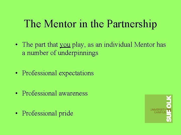 The Mentor in the Partnership • The part that you play, as an individual