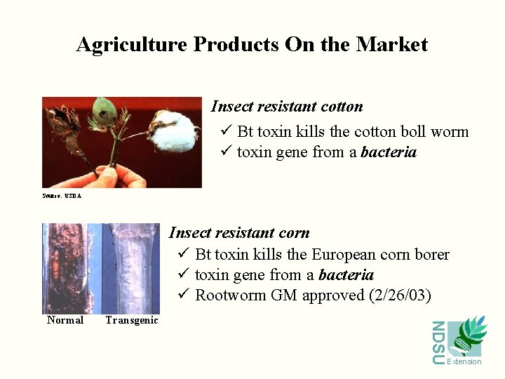 Agriculture Products On the Market Insect resistant cotton ü Bt toxin kills the cotton