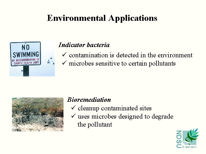 Environmental Applications Indicator bacteria ü contamination is detected in the environment ü microbes sensitive