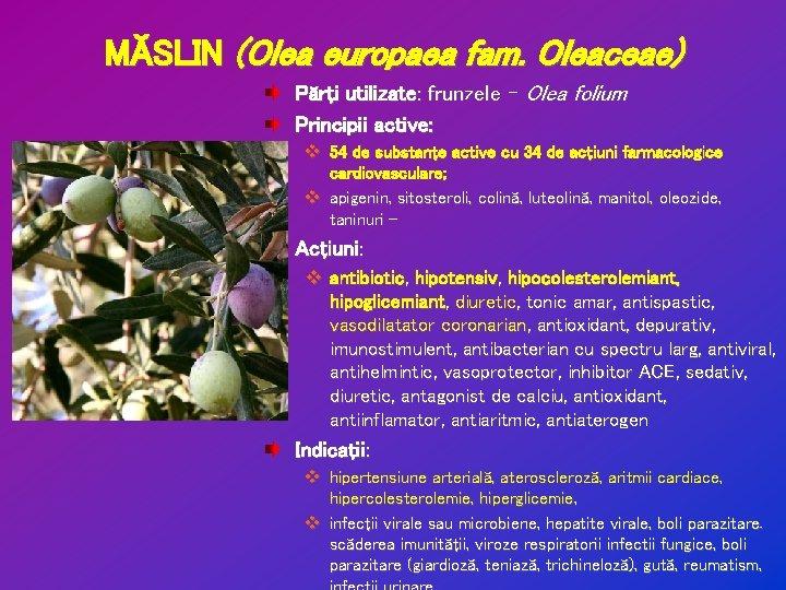neem frunze pentru pierderea în greutate)