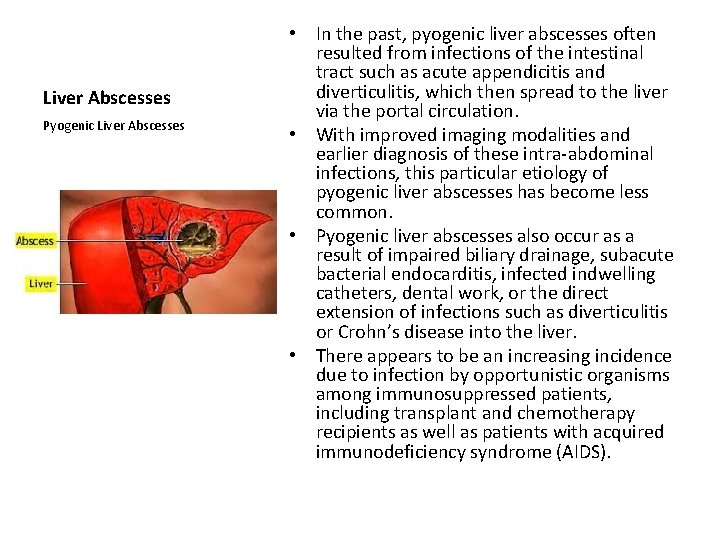 Liver Abscesses Pyogenic Liver Abscesses • In the past, pyogenic liver abscesses often resulted