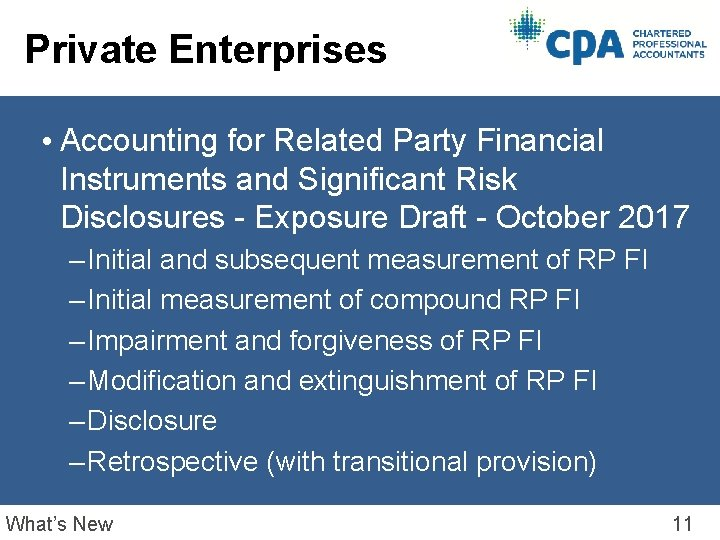 Private Enterprises • Accounting for Related Party Financial Instruments and Significant Risk Disclosures -