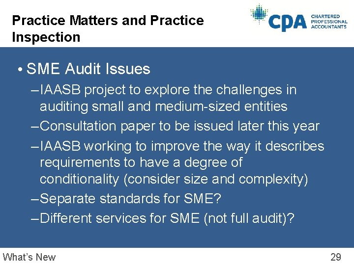 Practice Matters and Practice Inspection • SME Audit Issues – IAASB project to explore