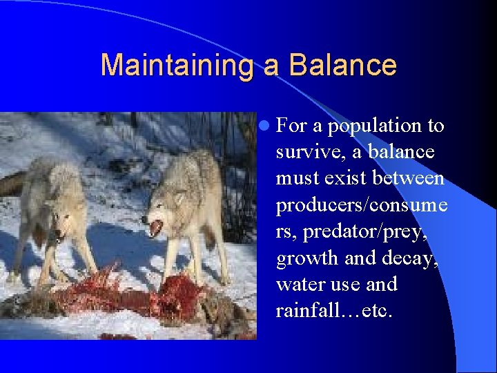 Maintaining a Balance l For a population to survive, a balance must exist between