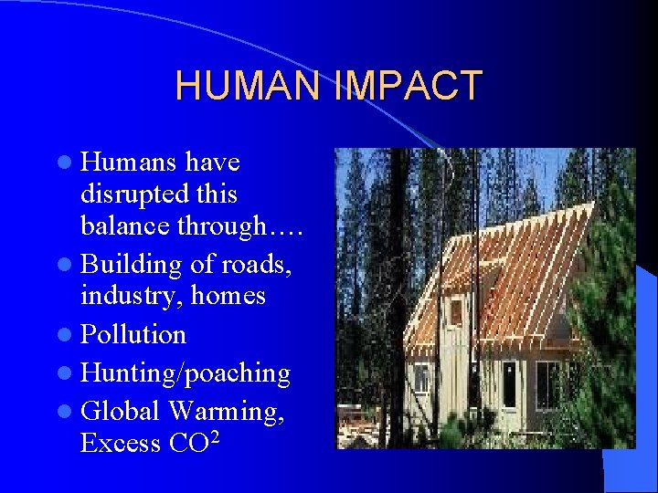 HUMAN IMPACT l Humans have disrupted this balance through…. l Building of roads, industry,