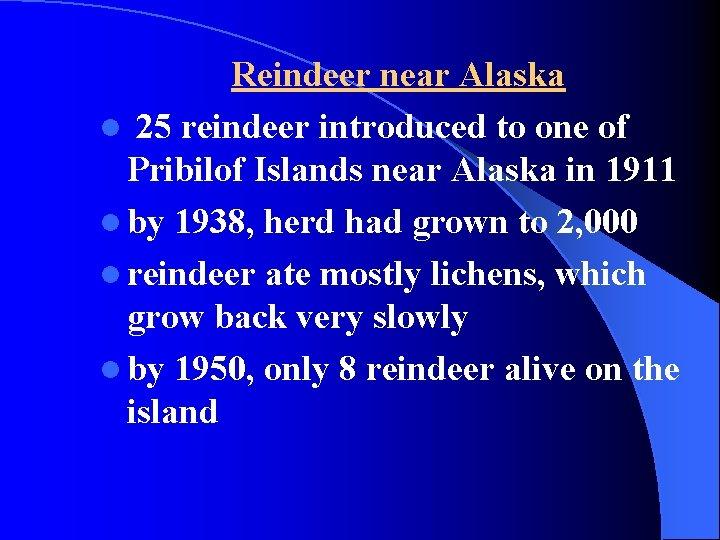 Reindeer near Alaska l 25 reindeer introduced to one of Pribilof Islands near Alaska