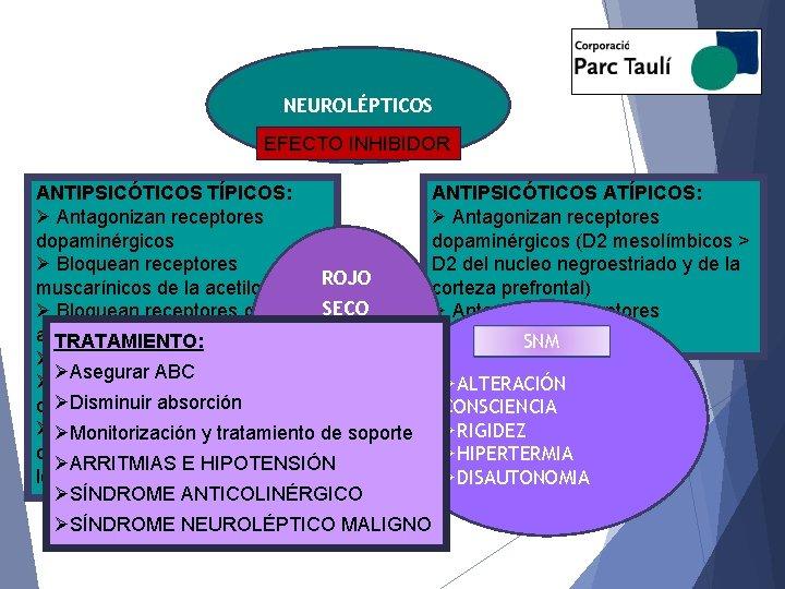 NEUROLÉPTICOS EFECTO INHIBIDOR ANTIPSICÓTICOS TÍPICOS: Ø Antagonizan receptores dopaminérgicos Ø Bloquean receptores muscarínicos de