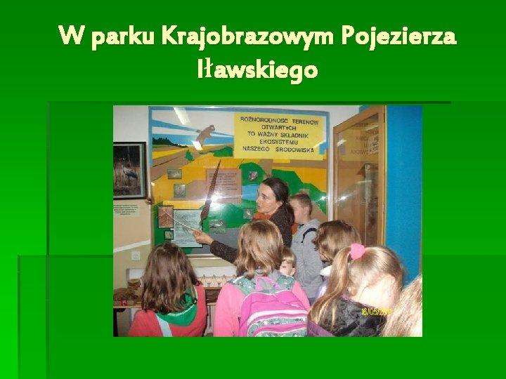 W parku Krajobrazowym Pojezierza Iławskiego