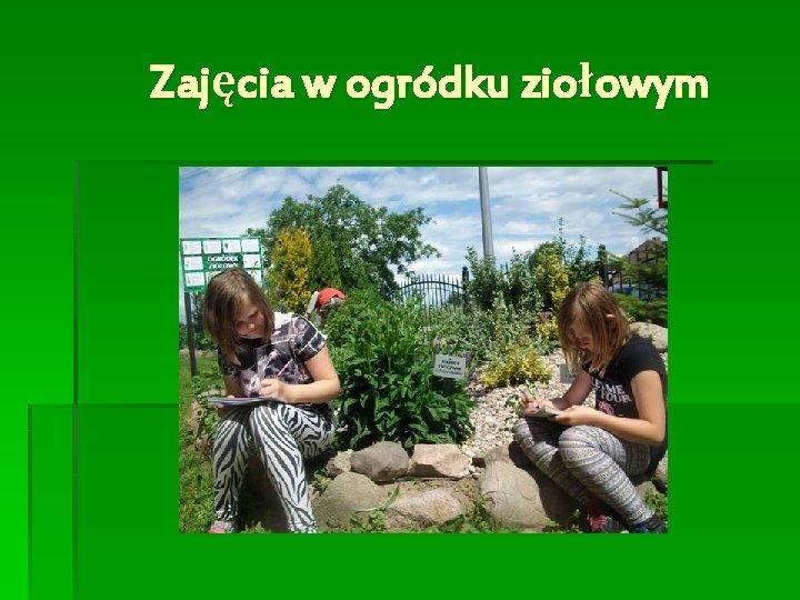 Zajęcia w ogródku ziołowym