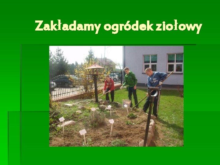 Zakładamy ogródek ziołowy