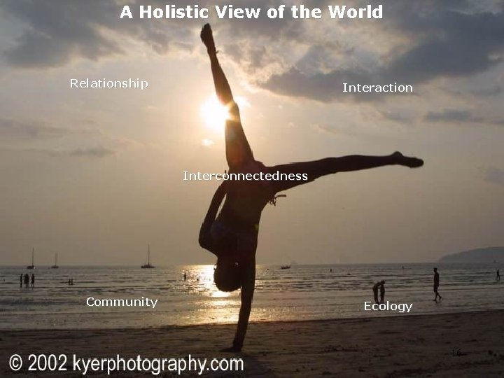 A Holistic View of the World Relationship Interaction Interconnectedness Community Ecology 16